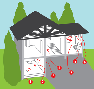 Radon Home Entry Points