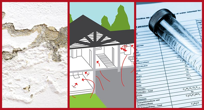 Mold, Radon and Water Testing Collage